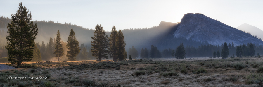 Morning Tuolumne